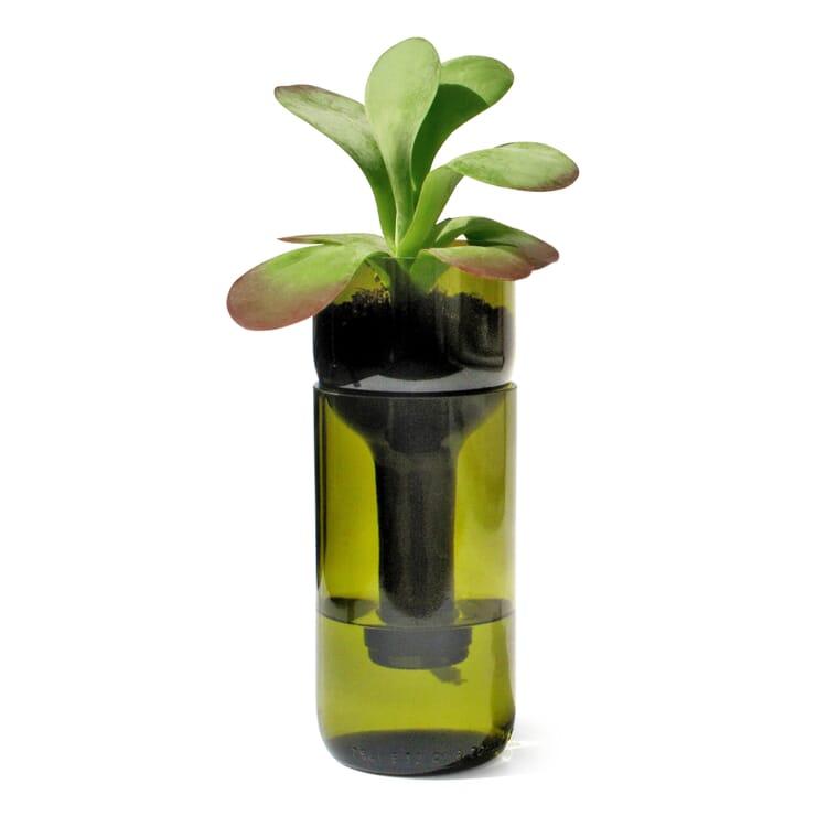Pflanzgefäß Self Watering Bottle