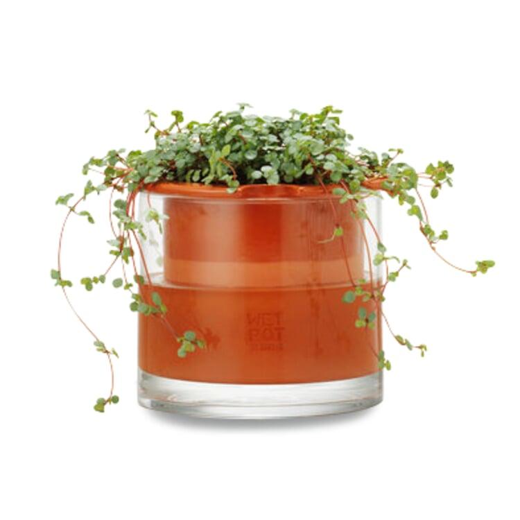 Pflanzgefäß Wet Pot Systems Ø 15 cm