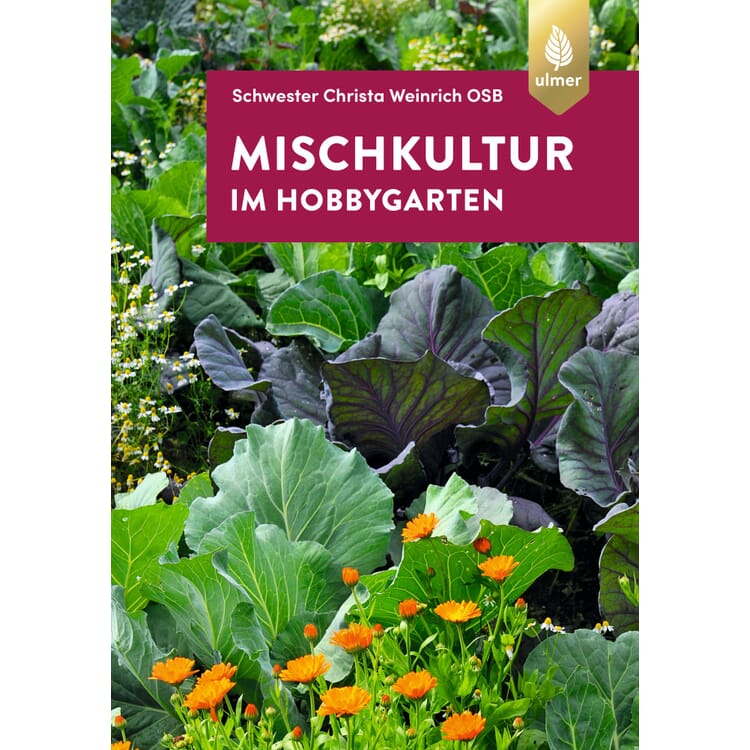 Mischkultur im Hobbygarten