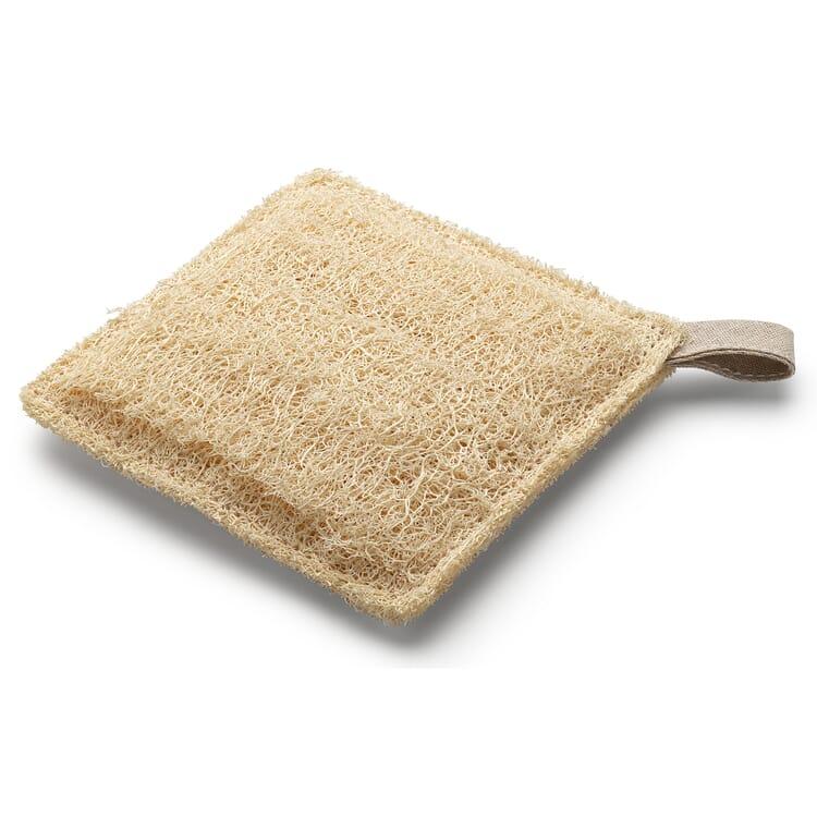 Sponge Made of Loofah