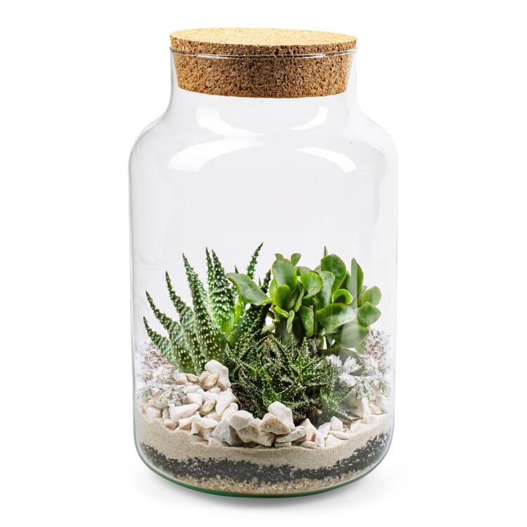 Flaschengarten mit Substrat