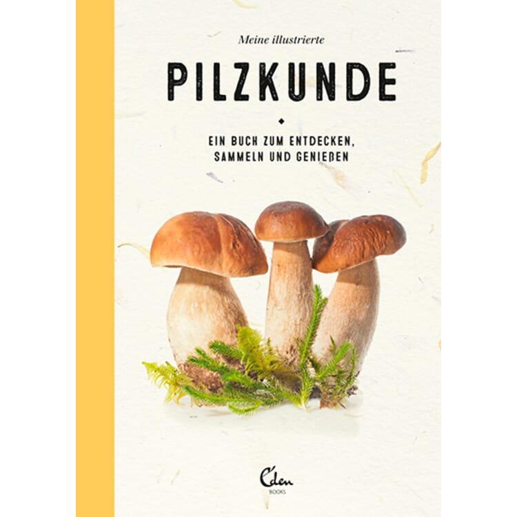 Meine illustrierte Pilzkunde