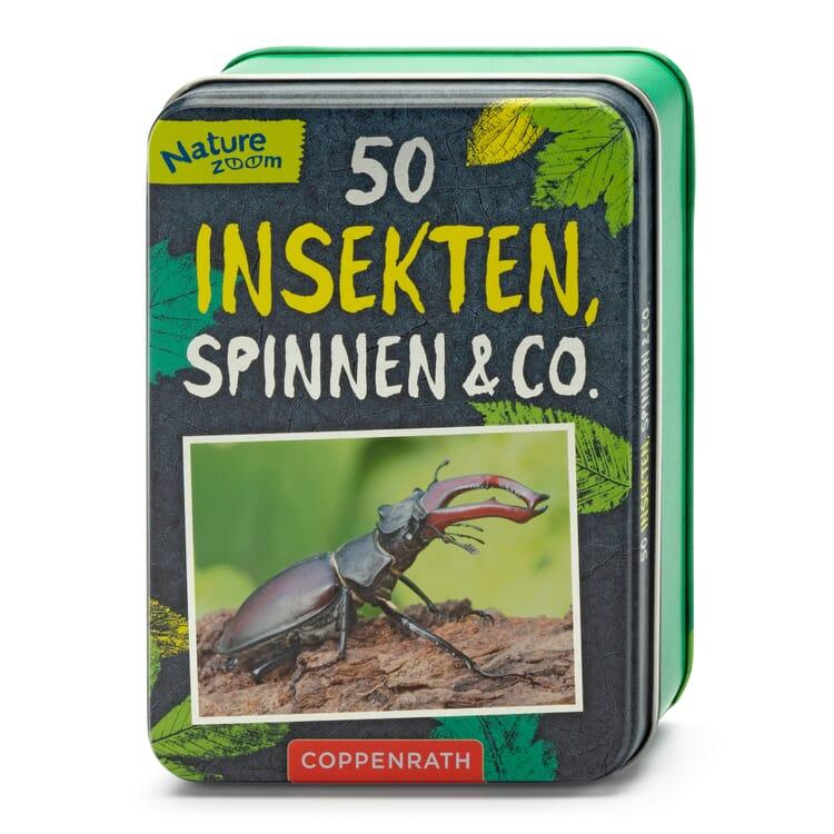 Kartenbox, 50 Insekten, Spinnen & Co.