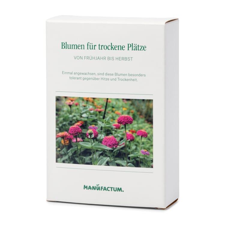 Blumensämereien für trockene heiße Plätze