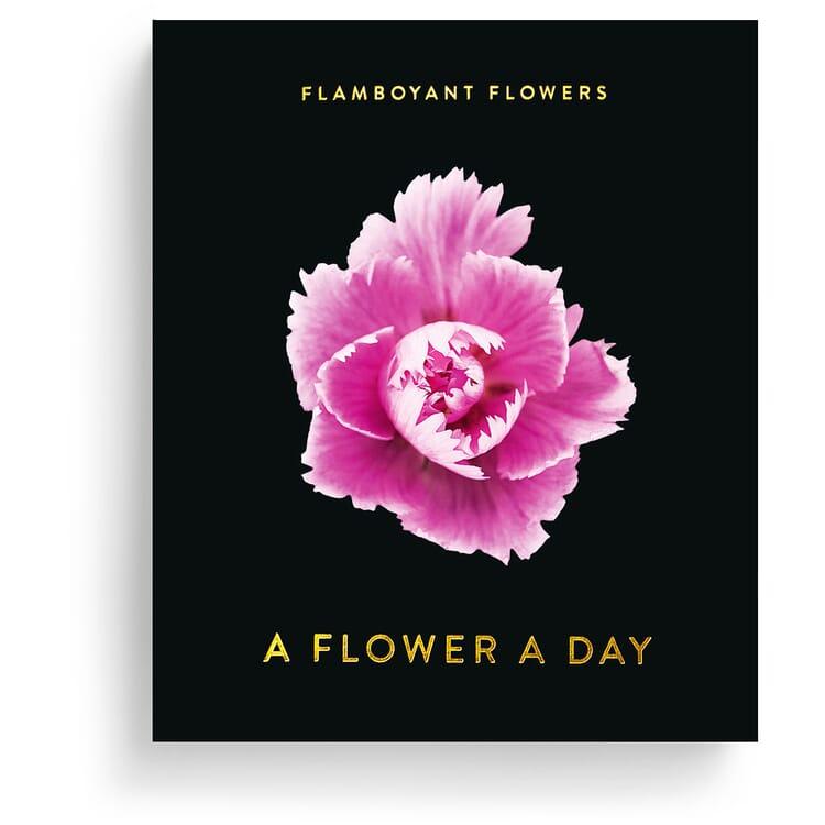 Jahreskalender Flamboyant Flowers